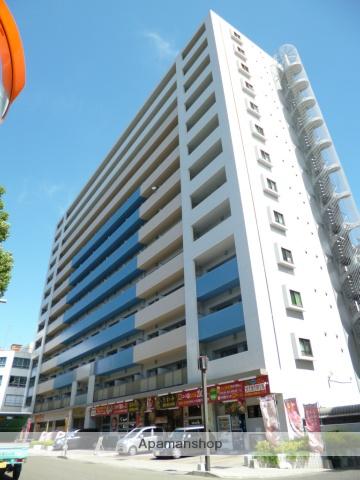 鹿児島県鹿児島市、高見馬場駅徒歩7分の築8年 13階建の賃貸マンション