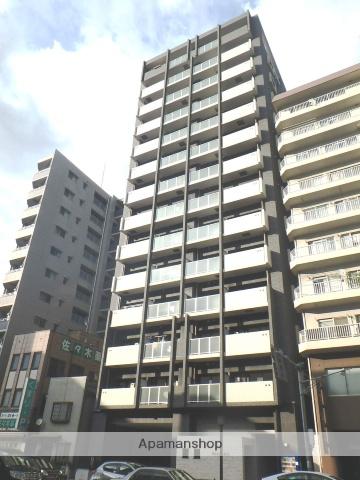 鹿児島県鹿児島市、高見馬場駅徒歩5分の新築 14階建の賃貸マンション