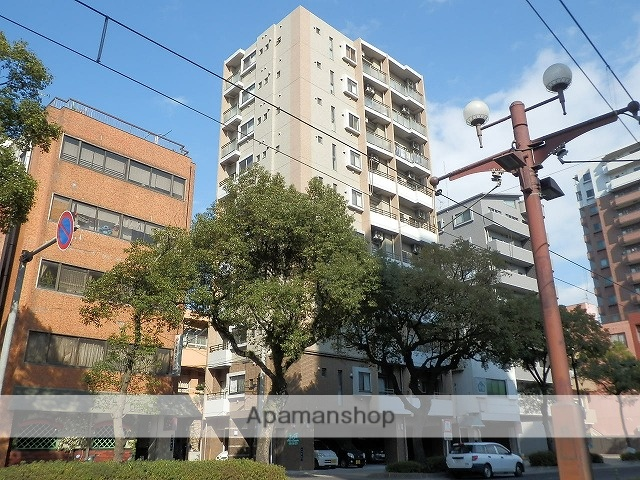 鹿児島県鹿児島市、鹿児島駅徒歩4分の築5年 10階建の賃貸マンション