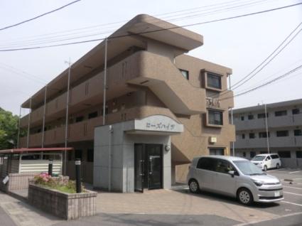 鹿児島県鹿児島市、宇宿駅徒歩17分の築14年 3階建の賃貸マンション