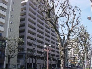 鹿児島県鹿児島市、鹿児島中央駅徒歩10分の築13年 15階建の賃貸マンション